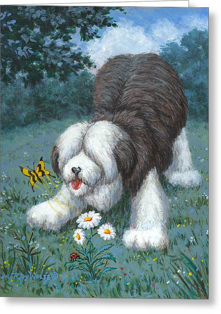 Hector Hassels A Butterfly Greeting Card