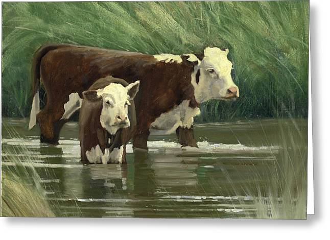 Greeting Card featuring the painting Heffers In The Pond by John Reynolds