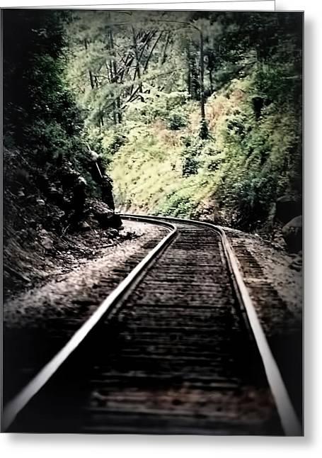 Hegia Burrow Railroad Tracks  Greeting Card