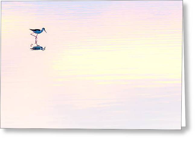 Heiwa IIi Greeting Card