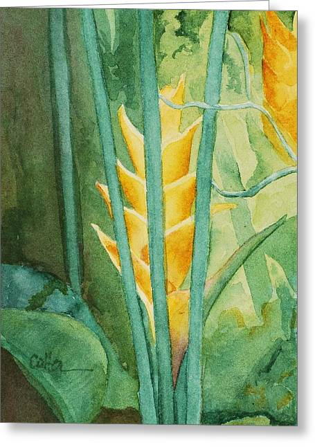 Heliconia Greeting Card by Diane Cutter