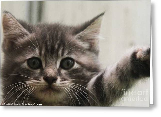 Hello Again Kitten Greeting Card by PainterArtist FIN