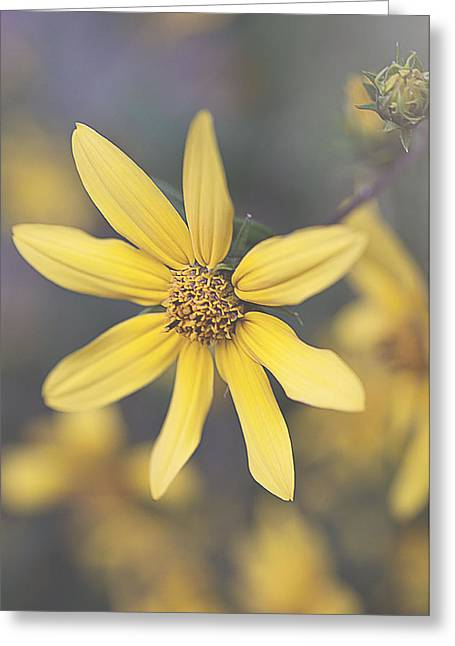 Hello Yellow Greeting Card by Faith Simbeck