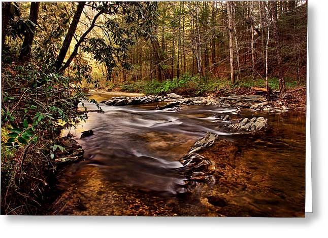 Hells Hole At The Chauga River Greeting Card by Brent Craft