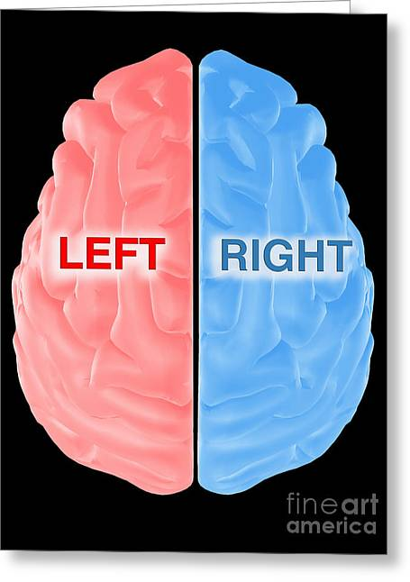 Hemispheres Of The Brain Greeting Card