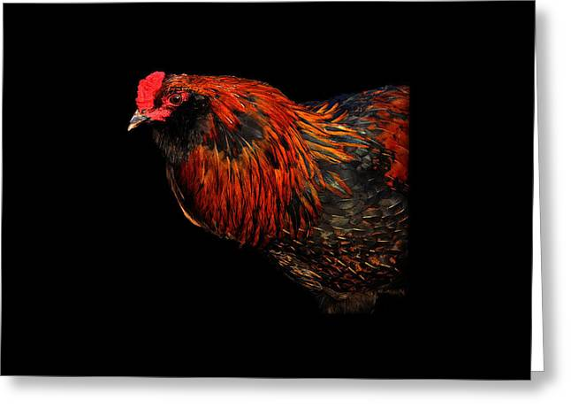 hen Greeting Card by Leon Hollins III