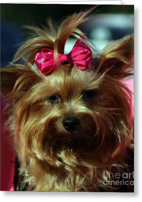 Her Pinkness Greeting Card by Steven  Digman