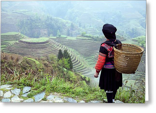 Her Rice Terraces Greeting Card by King Wu