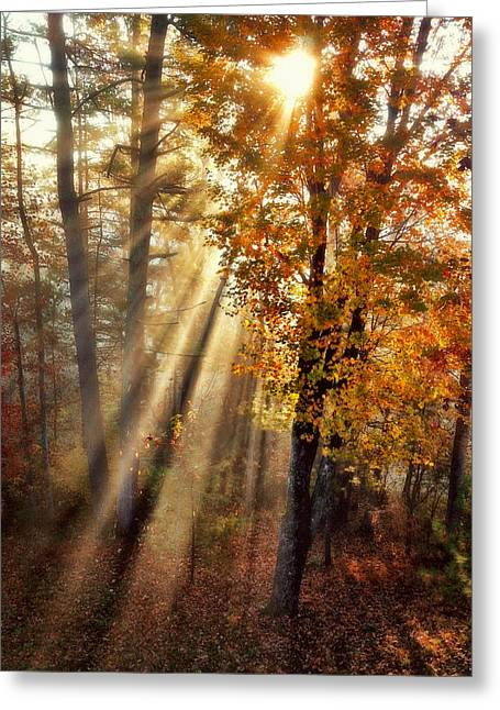 Here Comes The Sun Greeting Card by Paul Cutright