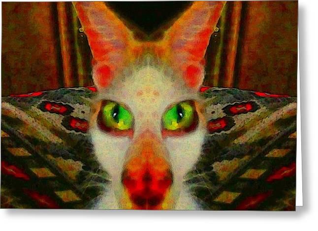 Here Kitty Kitty 2 Greeting Card
