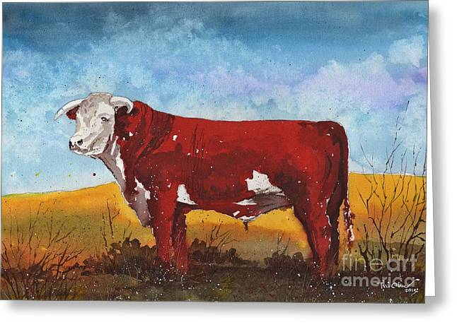 Hereford Bull Greeting Card by Tim Oliver