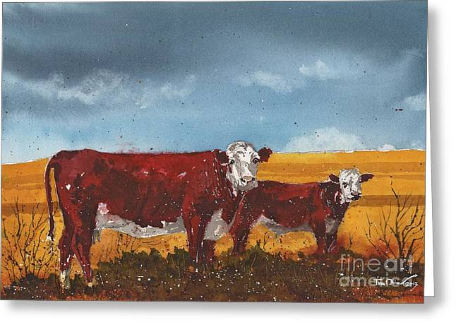 Hereford Cow And Calf Greeting Card by Tim Oliver