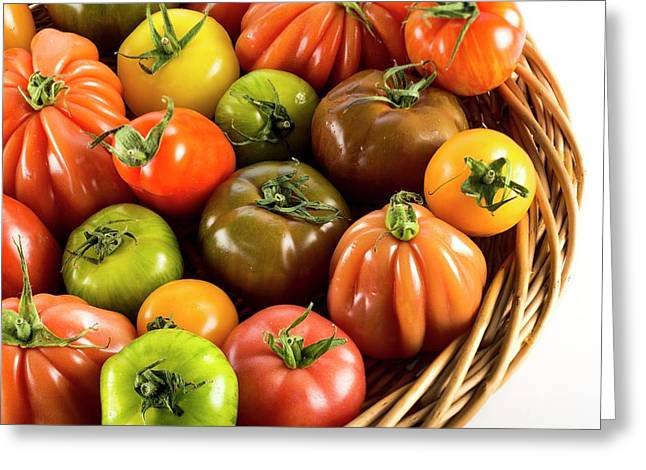 Heritage Tomatoes Greeting Card
