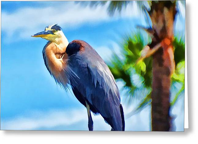 Heron And Palms Greeting Card by Pamela Blizzard