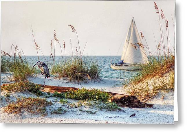 Heron And Sailboat Greeting Card