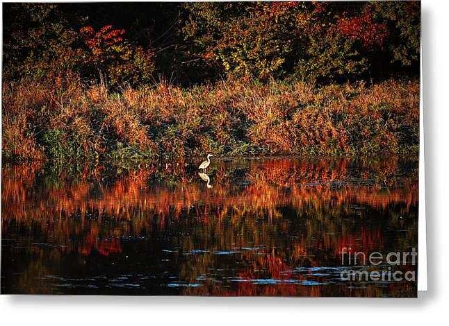 Heron Hideaway Greeting Card by Elizabeth Winter