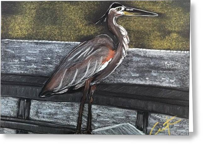 Heron On Hunting Island Fishing Dock Greeting Card
