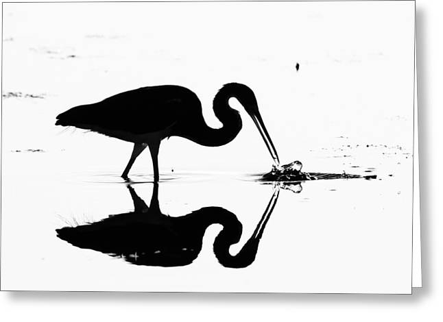 Heron Silhouette Greeting Card by Brian Magnier