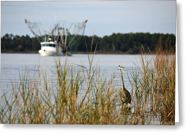 Heron Wading With Passing Shrimp Boat Greeting Card