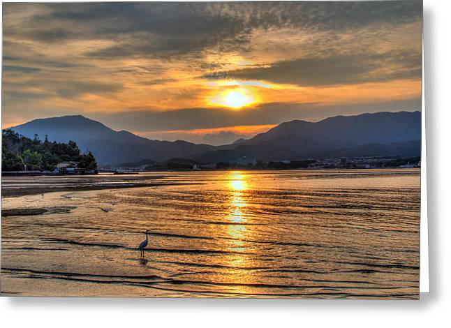Heron Watching The Japanese Sunset Greeting Card by Laura Palmer