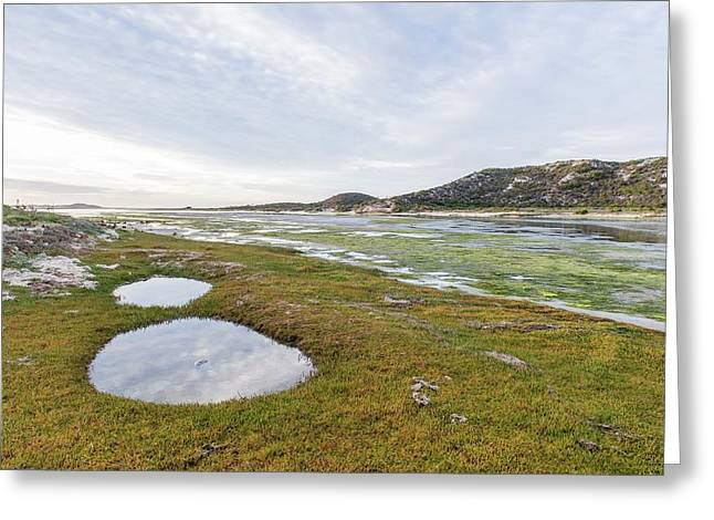 Heuningnes River And Estuary Greeting Card