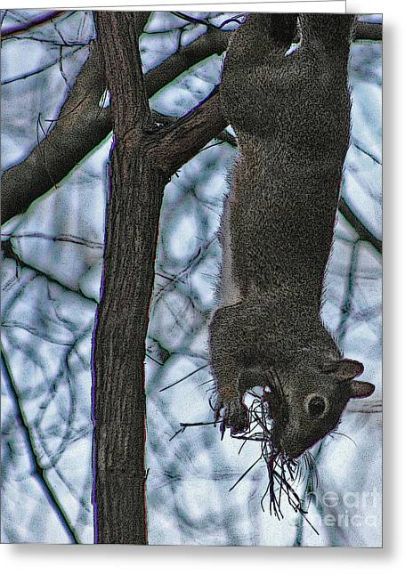 Hey I'm Upside Down Greeting Card by D Wallace