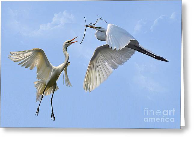 Hey...go Find Your Own Stick Greeting Card by Kathy Baccari