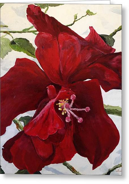 Double Hibiscus Greeting Card by Alan Lakin