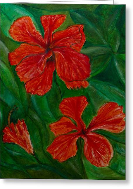 Hibiscus Greeting Card by Peter Turner