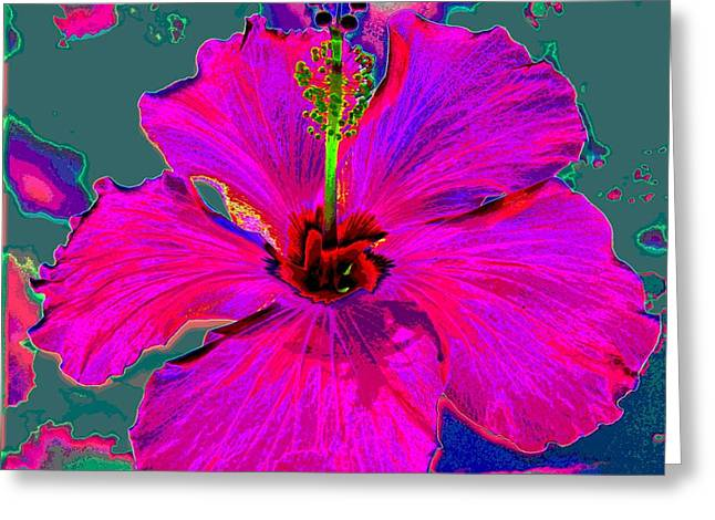 Hibiscus Skies Greeting Card by Rebecca Flaig