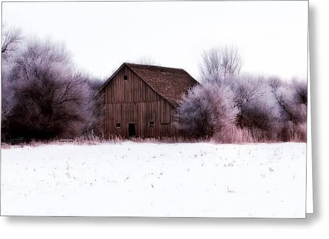 Hidden Barn Greeting Card by Julie Hamilton