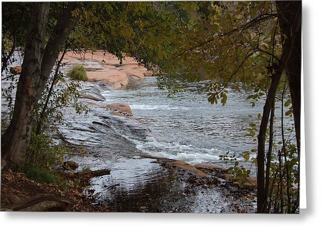 Hidden Brook Greeting Card by Judith Russell-Tooth