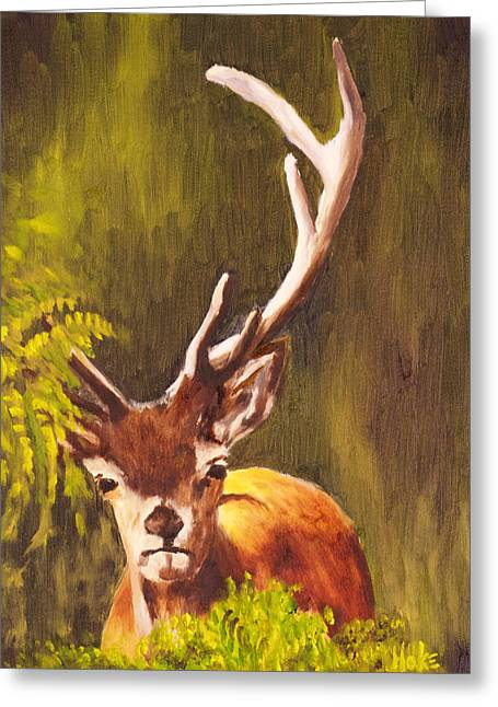 Hidden Deer Greeting Card