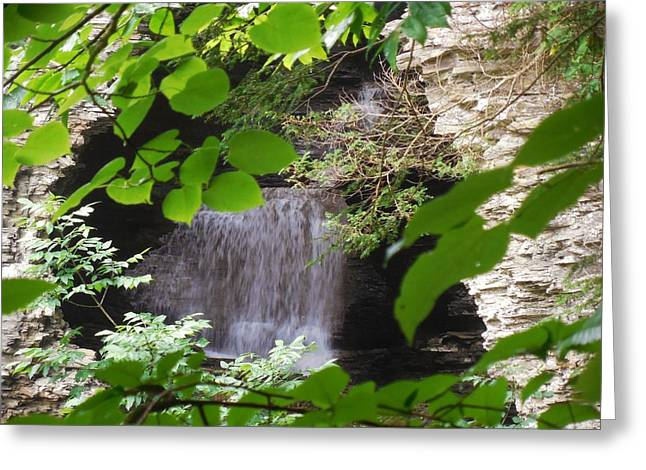 Hidden Falls Greeting Card by Anthony Thomas