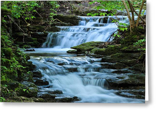 Hidden Falls Greeting Card by Julie Andel