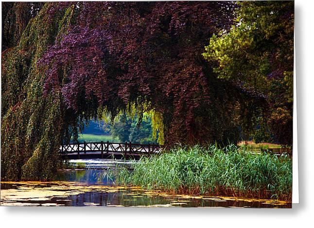 Hidden Shadow Bridge At The Pond. Park Of The De Haar Castle Greeting Card by Jenny Rainbow