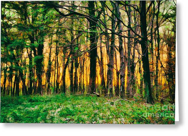 Hidden Sunrise In The Blue Ridge Greeting Card