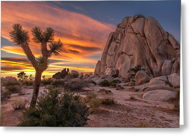 Hidden Valley Rock - Joshua Tree Greeting Card by Peter Tellone