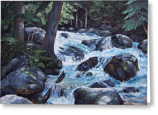Hidden Waterfall Greeting Card by Donna Munsch