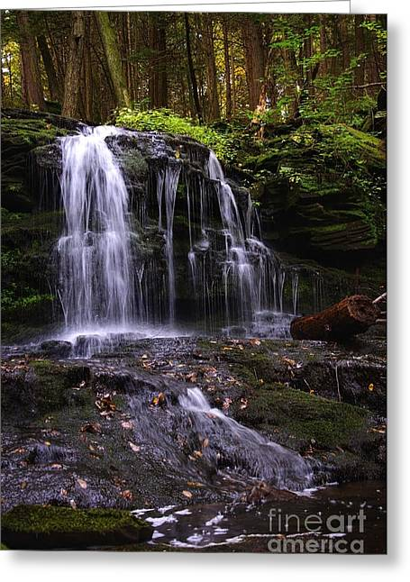 Hidden Waterfalls Of Wayne County I Greeting Card
