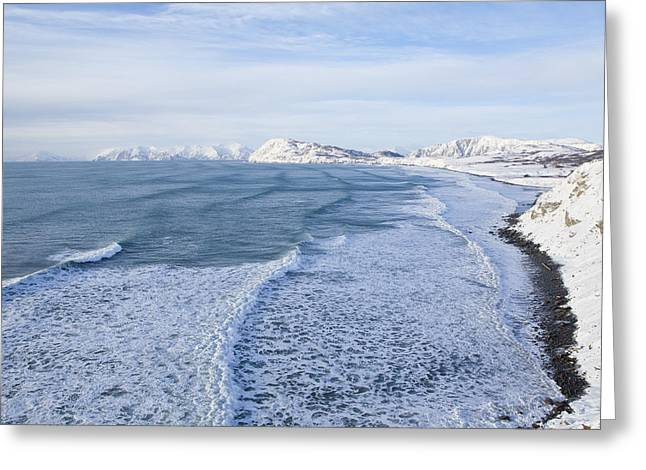Hide Tide On Fossil Beach Greeting Card by Tim Grams