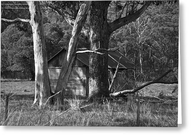 Greeting Card featuring the photograph Hideaway by Marty  Cobcroft