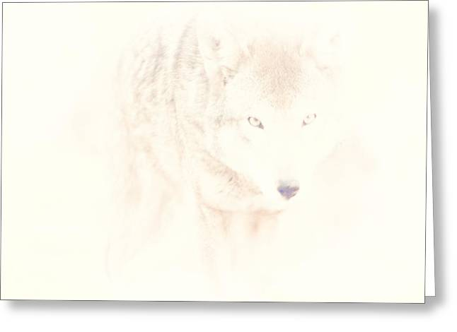 Hiding Behind Those Eyes Greeting Card by Karol Livote