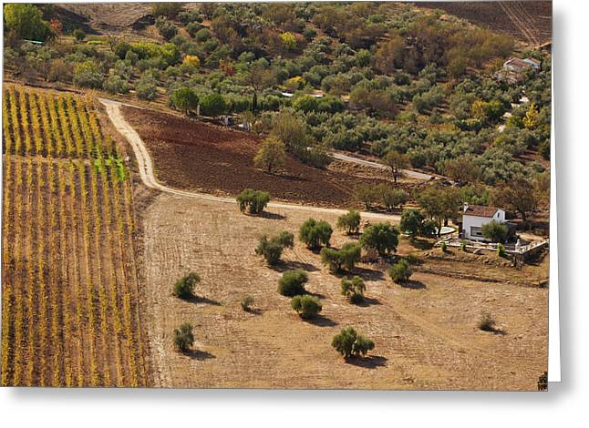 High Angle View Of A Field, Ronda Greeting Card