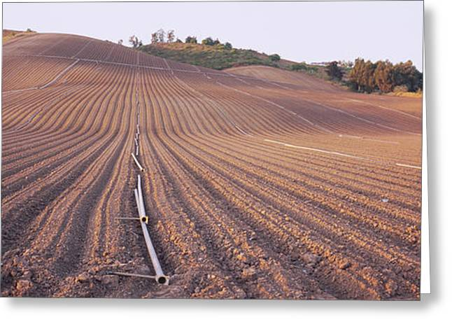 High Angle View Of A Plowed Field Greeting Card