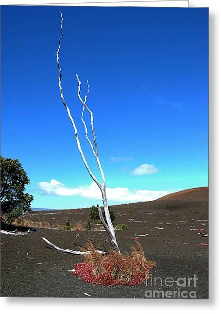 High Atop Maunakea On Hawaii Greeting Card by Micah May
