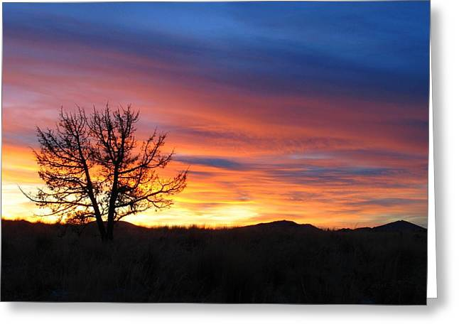Greeting Card featuring the photograph High Desert Sunset by Kevin Desrosiers