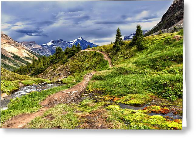 High Mountain Trail Greeting Card
