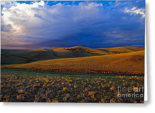 High Plains Drama Greeting Card