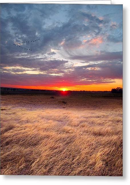 High Plains Sunrise Greeting Card by Ric Soulen
